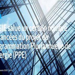 Programmation Pluriannuelle de l'Energie (PPE)