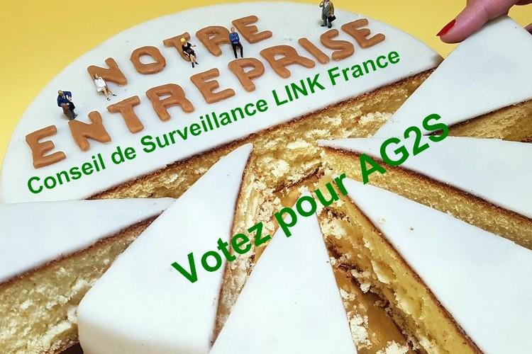 2.A quoi sert le Conseil de Surveillance de LINK France ?
